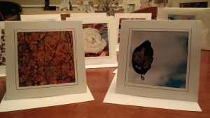 Square Blank Notecards 4x4 size also includes a 5x7 envelope