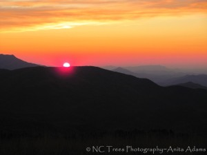 Sunset - Max Patch, NC by Anita Adams of NC Trees Photography