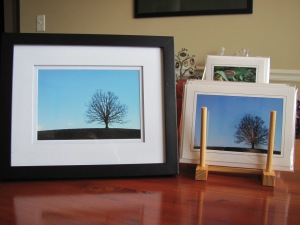 "5"" x 7"" Blank Photo Cards 4"" x 6"" Framed Prints"