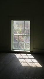 Window Light III