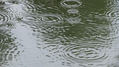 Rain Circles II