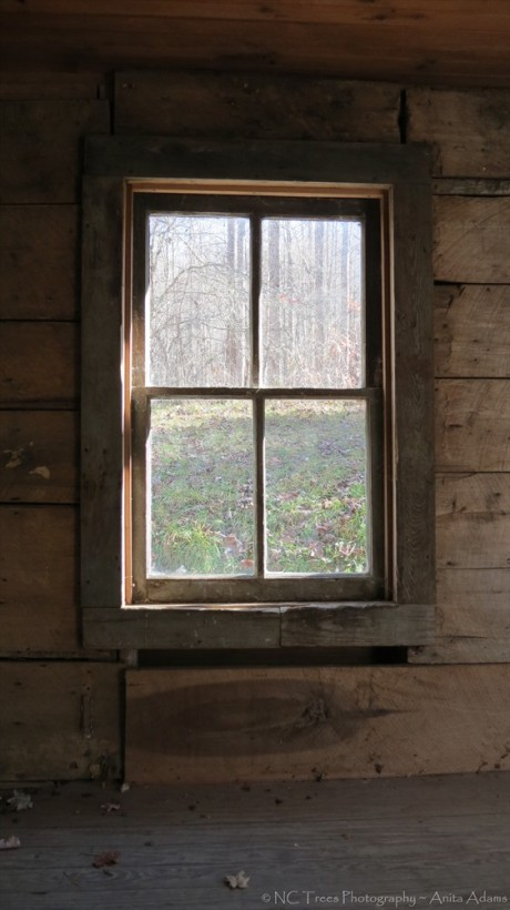 1903 Window by Anita Adams NC Trees Photography
