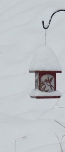 Red Birdfeeder in Snow