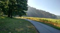 September Walk by Anita Adams NC Trees Photography
