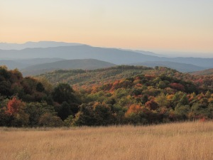 Autumn in the Smokies by Anita Adams of NC Trees Photography