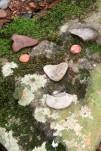 Heart Rocks upon Heart Rock TN