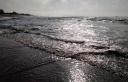 Signed Ocean Serenity